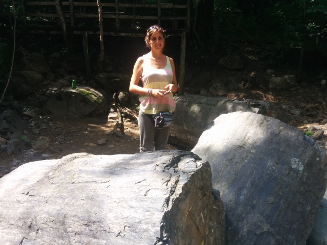 Bosque Petrificado Puyango